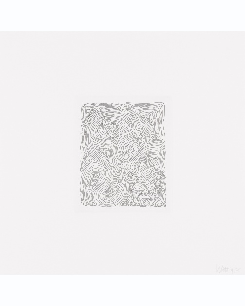 """Small Line Etchings"" 1 of 4  (2005) by Sol LeWitt"
