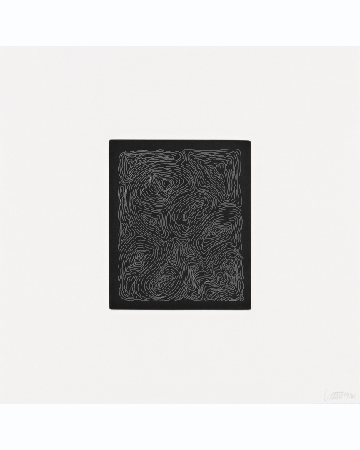 """Small Line Etchings"" 2 of 4  (2005) by Sol LeWitt"