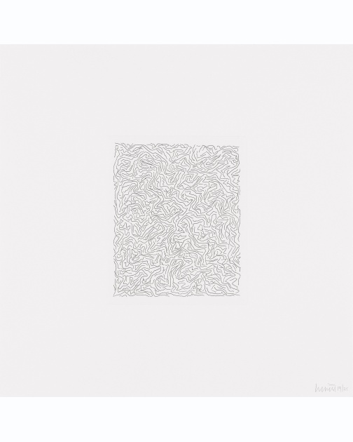 """Small Line Etchings"" 3 of 4  (2005) by Sol LeWitt"