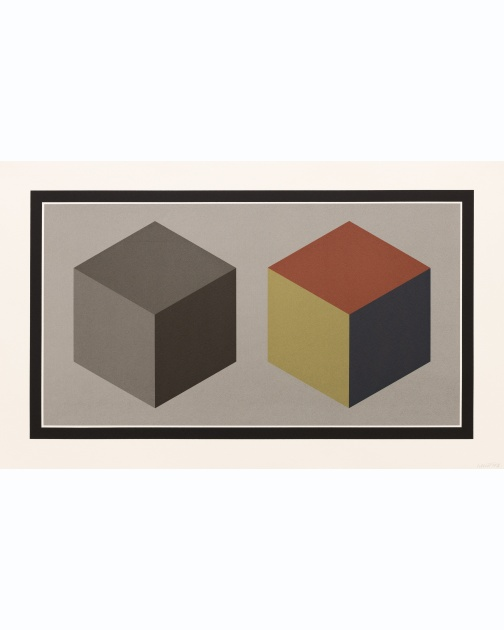 """Double Cubes in Grays and Colors Superimposed"" (1989) by Sol LeWitt"