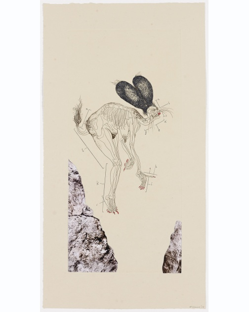 """The Original Nine Daughters"" (2012) by Wangechi Mutu"