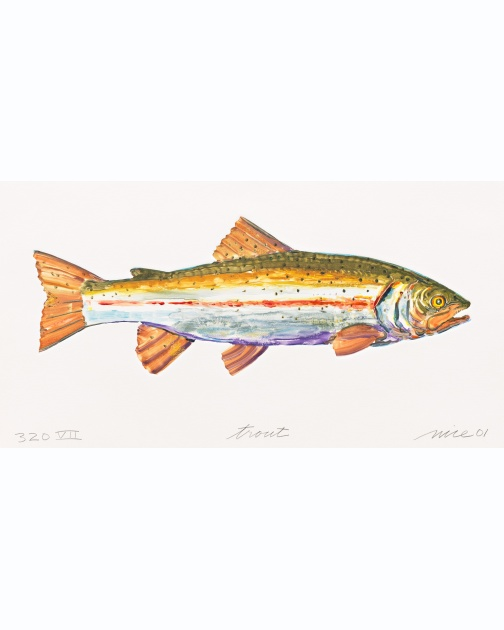 """Trout VII (320)"" (2001) by Don Nice"