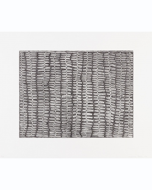 """Shaded Recursive Combs"" (2007) by James Siena"