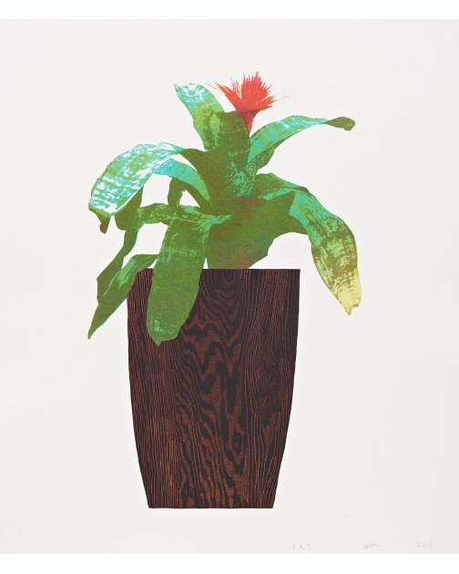 """Three Landscape Pots: Bromeliad"" (2019) by Jonas Wood"