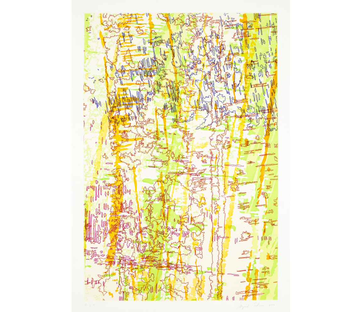 """Tracings from the Indianapolis Motor Speedway II"" (2009) by Ingrid Calame"